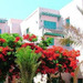 Zahabia Village & Beach Resorts хотел - почивка в Хургада, Египет 4*