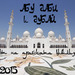 Дубай и Абу Даби 2017