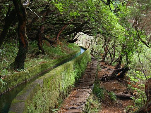 Една от множеството живописни пътеки покрай каналите (левади), прокарани през планината за отвеждане на част от водата от влажния север към сухия и топъл юг.