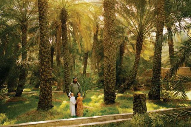 Оазисът Al Ain