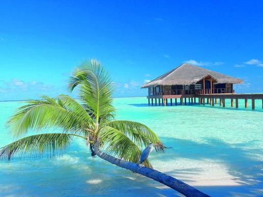 Топ пакет за почивка на Малдивите